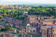 Ruins of Rome Forum Stock Image