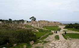 Ruins of Salamis Royalty Free Stock Image