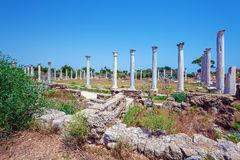 Ruins of Salamis near Famagusta Stock Photos