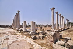 Ruins of Salamis, Northern Cyprus Royalty Free Stock Photography