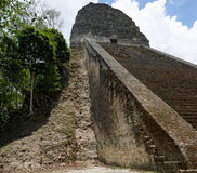 Maya pyramid in Tikal, Guatemala Stock Image