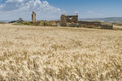Ruins of Sicily. In the middle of sicilian interior Royalty Free Stock Images