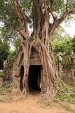 Ta Som Temple in Angkor Royalty Free Stock Photos