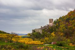 Spitz castle with autumn vineyard in Wachau valley, Austria. Ruins of Spitz castle with autumn vineyard in Wachau valley, Austria royalty free stock photography