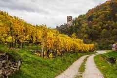 Spitz castle with autumn vineyard in Wachau valley, Austria. Ruins of Spitz castle with autumn vineyard in Wachau valley, Austria stock photos