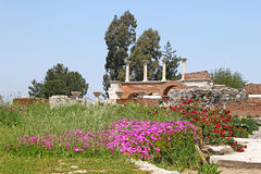 Ruins of st. Johns Basilica, Selcuk, Ephesus, Turk Stock Image