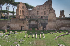 Ruins of Stadium Domitanus at the Palatine Hill in Rome, Italy Royalty Free Stock Photos
