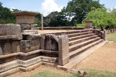 Ruins, steps and trees. Ruins in Anuradhapura, Sri Lanka Royalty Free Stock Images