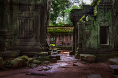 The Ruins of Ta Prohm Royalty Free Stock Images