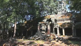 Ruins ta prohm. In ankor wat, siem riep, cambodia stock video