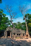 The ruins of Ta Prohm Temple Royalty Free Stock Images