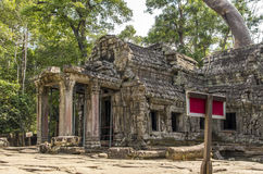 Ruins of Ta Prohm temple. Ta Prohm temple at Angkor, Siem Reap province, Cambodia Royalty Free Stock Image