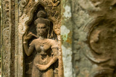 Ruins of Ta Prohm temple. Ruins of  Ta Prohm temple in Angkor Wat, near Siem Reap, Cambodia, South East Asia Stock Image