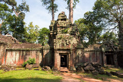Ruins of Ta Prohm temple. Ruins of  Ta Prohm temple in Angkor Wat, near Siem Reap, Cambodia, South East Asia Stock Photos