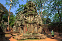 Ruins of Ta Prohm temple. Ruins of  Ta Prohm temple in Angkor Wat, near Siem Reap, Cambodia, South East Asia Stock Images