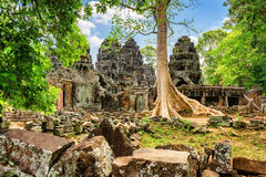 Ruins of Ta Prohm temple nestled amongst rainforest in Angkor Royalty Free Stock Photos