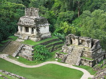 Ruins of the temple. Ruins of the mayan temple in Palenque Royalty Free Stock Images