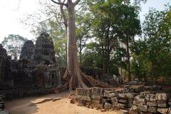Ruins of Temple at Angkor Wat, Cambodia Stock Images