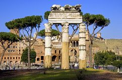 The ruins of the temple of Castres and Pollux Roman Forum Royalty Free Stock Images