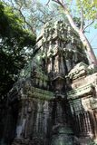 The ruins of the temple complex of Ta Prohm in Cambodia. Architectural heritage of the Khmer Empire. A masterpiece of world. Architecture royalty free stock images