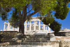 Ruins of temple on island Aegina, Greece. Archaeology background Royalty Free Stock Images