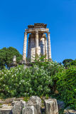 The ruins of the Temple of Vesta Stock Images