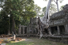 Ruins and temples of Angkor Wat. Siem Reap, Cambodia Royalty Free Stock Photo