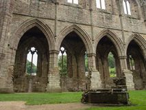 Ruins of Tintern Abbey, a former cistercian church from the 12th Stock Photo