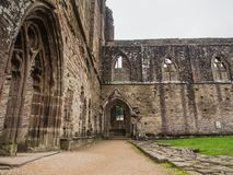 Ruins of Tintern Abbey, a former cistercian church from the 12th Royalty Free Stock Photo