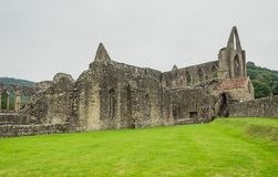 Ruins of Tintern Abbey, a former cistercian church from the 12th Royalty Free Stock Images