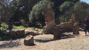 Ruins of Tipasa(Tipaza).The antic city was a colonia in Roman province Mauretania Caesariensis locat stock video footage