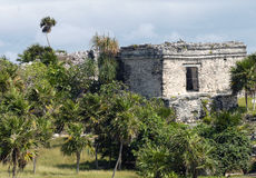 Ruins of Tulum. Mayan ancient ruin in archaeological site of Tulum, Mexico royalty free stock image