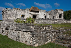 Ruins in Tulum, Mexico. Tulum, ancient ruins in Mexico royalty free stock photography
