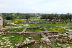 Ruins of Umm Qais in Jordan Royalty Free Stock Photos