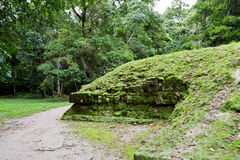 Ruins under the jungle Royalty Free Stock Images