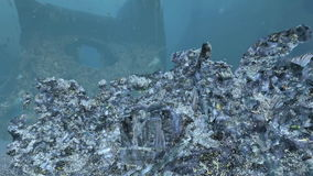 Ruins under the ocean stock footage