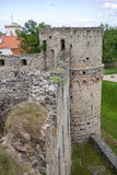 Ruins Vedensky castle Stock Image