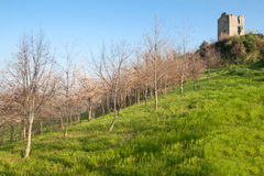 Ruins of the village of Castelnuovo Royalty Free Stock Image