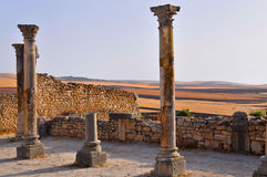 The ruins of Volubilis in Morocco Royalty Free Stock Photography