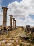 Ruins at Volubilis Morocco Stock Photography