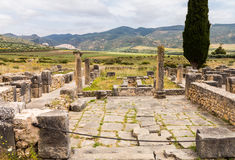 Ruins at Volubilis Morocco Royalty Free Stock Images