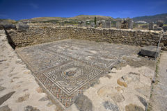Ruins of Volubilis - mosaic Royalty Free Stock Image