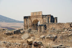Ruins of Volubilis Stock Images