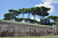 Ruins wall Rome Stock Images