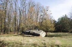 Ruins Werewolf. The rate of Adolf Hitler in Ukraine. Stock Image