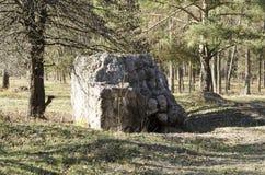 Ruins Werewolf. The rate of Adolf Hitler in Ukraine. Royalty Free Stock Photos