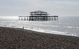 The ruins of the West Pier in the light of the rising sun. Royalty Free Stock Images