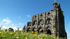 Ruins of Whitby Abbey Stock Photo