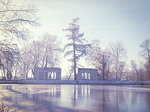 Ruins with white columns and a tall tree in winter Stock Photo
