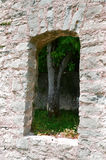 Ruins window Stock Images